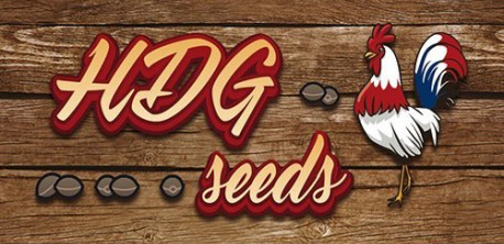 hdgseeds_logo.png.549e307991dbf0eeef985be9bf796dd3.png